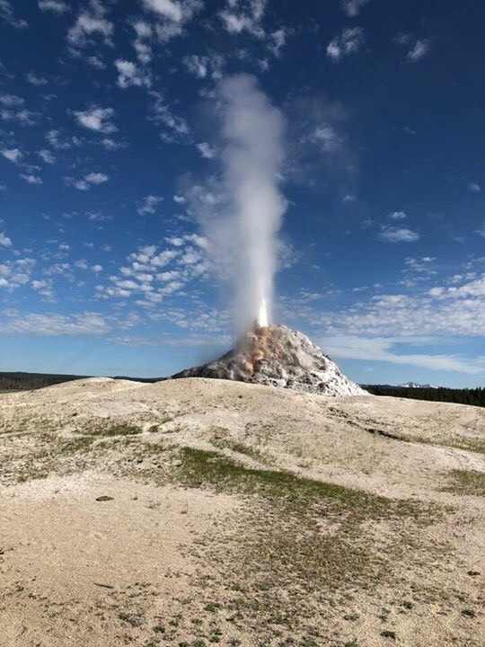Yellowstone Geisers